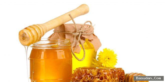 فوائد النحل للبشرة كريمات النحل