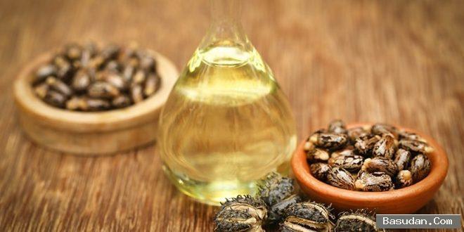 فوائد اللوز الحلو للبشرة اللوز