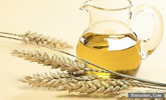 فوائد جنين القمح للبشرة جنين