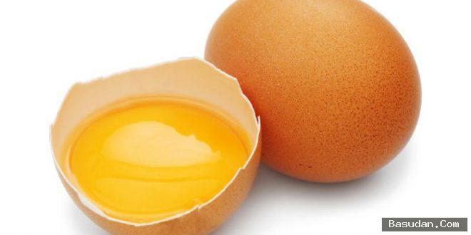 كيفية تحضير شامبو البيض المنزل