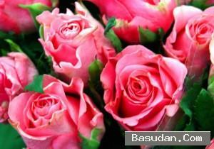 كيفية لوشن الورد المنزل خطوات