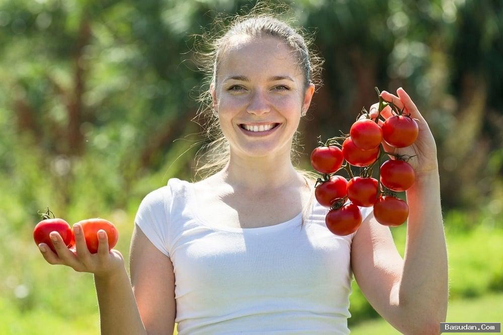 البشرة نضرة الطماطم لبشرة نضرة