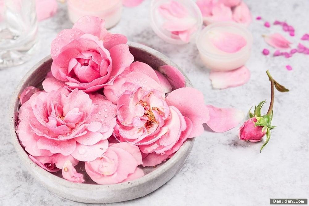 اهمية الورد للبشرة فوائد الورد