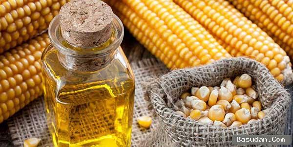 فوائد الذرة للشعر طريقه استخدام