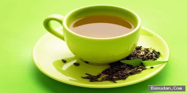 اهميه الشاي الأخضر الشاي الأخضر