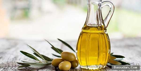أهمية الزيتون للشعر وصفات الزيتون