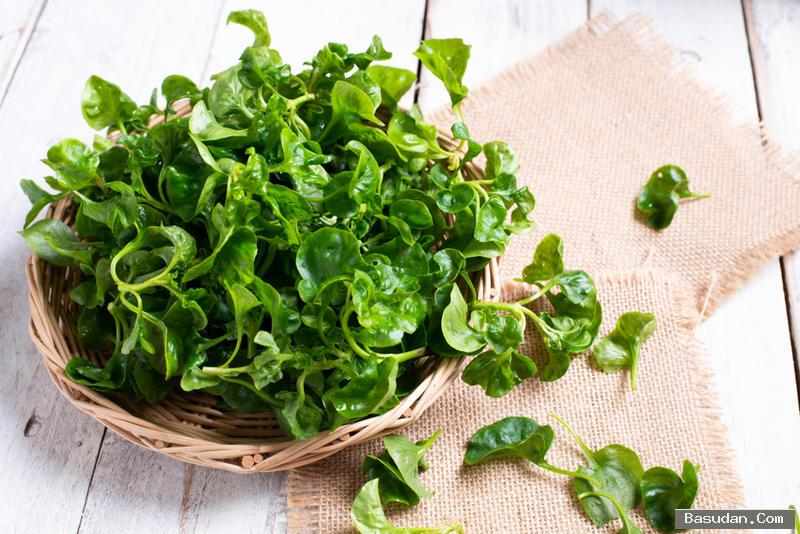 فوائد تناول نبات الجرجير للحامل