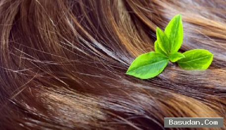 اجمل طريقة تكثيف الشعر